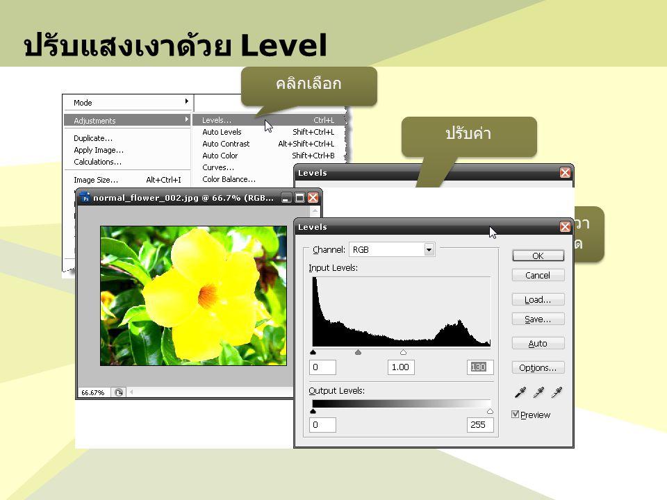 ตัวอย่างการใช้งาน Filter 4 กลับสู่โหมดปรกติ เทสีลงที่ Selection Ctrl + D ได้รูปตามที่ต้องการ