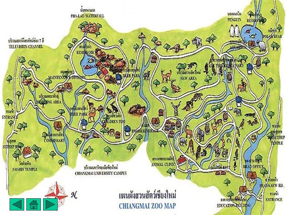 สารบัญ แผนที่สวนสัตว์เชียงใหม่ ข้อมูลเกี่ยวกับสวนสัตว์ แผนที่สวนสัตว์เชียงใหม่ ข้อมูลเกี่ยวกับสวนสัตว์ ชื่อของหมีแพนด้าช่วง ช่วง - หลินฮุ่ย ชื่อของหมี