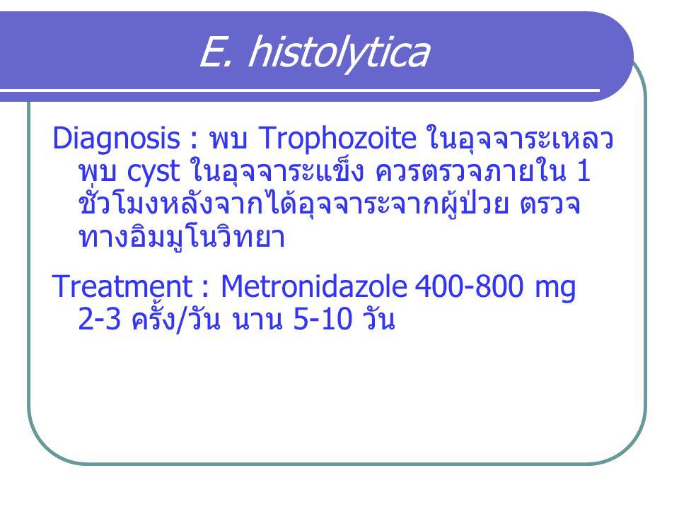Diagnosis : พบ Trophozoite ในอุจจาระเหลว พบ cyst ในอุจจาระแข็ง ควรตรวจภายใน 1 ชั่วโมงหลังจากได้อุจจาระจากผู้ป่วย ตรวจ ทางอิมมูโนวิทยา Treatment : Metr