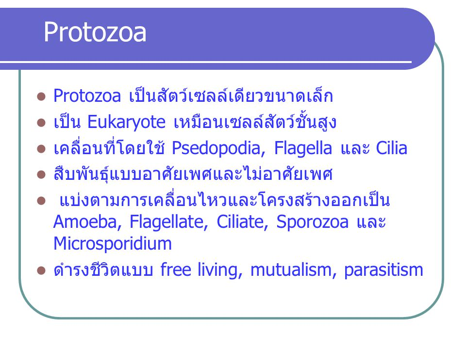Protozoa เป็นสัตว์เซลล์เดียวขนาดเล็ก เป็น Eukaryote เหมือนเซลล์สัตว์ชั้นสูง เคลื่อนที่โดยใช้ Psedopodia, Flagella และ Cilia สืบพันธุ์แบบอาศัยเพศและไม่