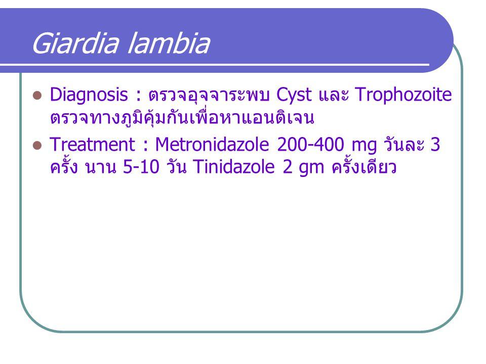 Giardia lambia Diagnosis : ตรวจอุจจาระพบ Cyst และ Trophozoite ตรวจทางภูมิคุ้มกันเพื่อหาแอนติเจน Treatment : Metronidazole 200-400 mg วันละ 3 ครั้ง นาน