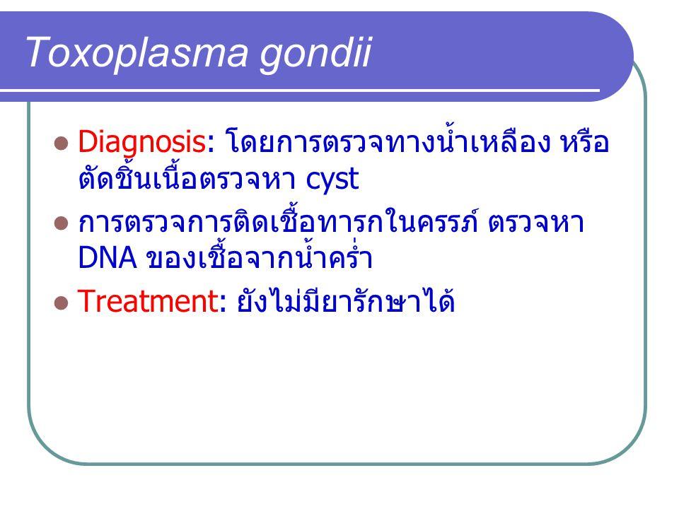 Toxoplasma gondii Diagnosis: โดยการตรวจทางน้ำเหลือง หรือ ตัดชิ้นเนื้อตรวจหา cyst การตรวจการติดเชื้อทารกในครรภ์ ตรวจหา DNA ของเชื้อจากน้ำคร่ำ Treatment