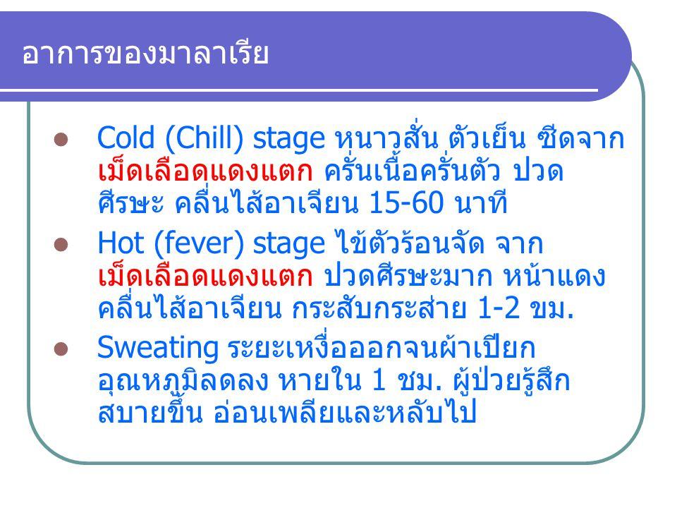 อาการของมาลาเรีย Cold (Chill) stage หนาวสั่น ตัวเย็น ซีดจาก เม็ดเลือดแดงแตก ครั่นเนื้อครั่นตัว ปวด ศีรษะ คลื่นไส้อาเจียน 15-60 นาที Hot (fever) stage