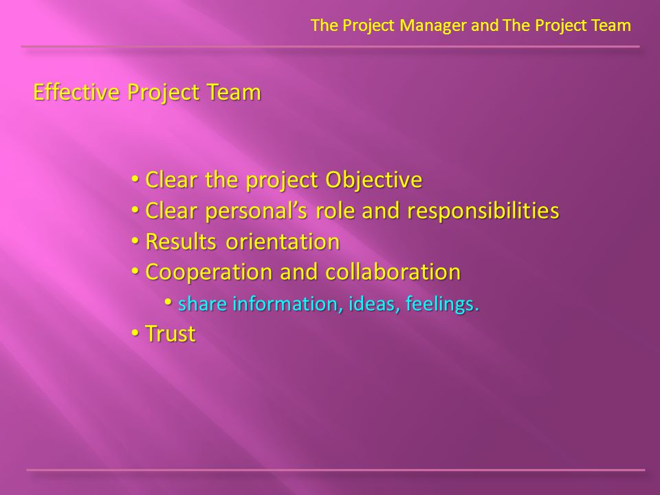 The Project Manager and The Project Team Effective Project Team Clear the project Objective Clear the project Objective Clear personal's role and resp
