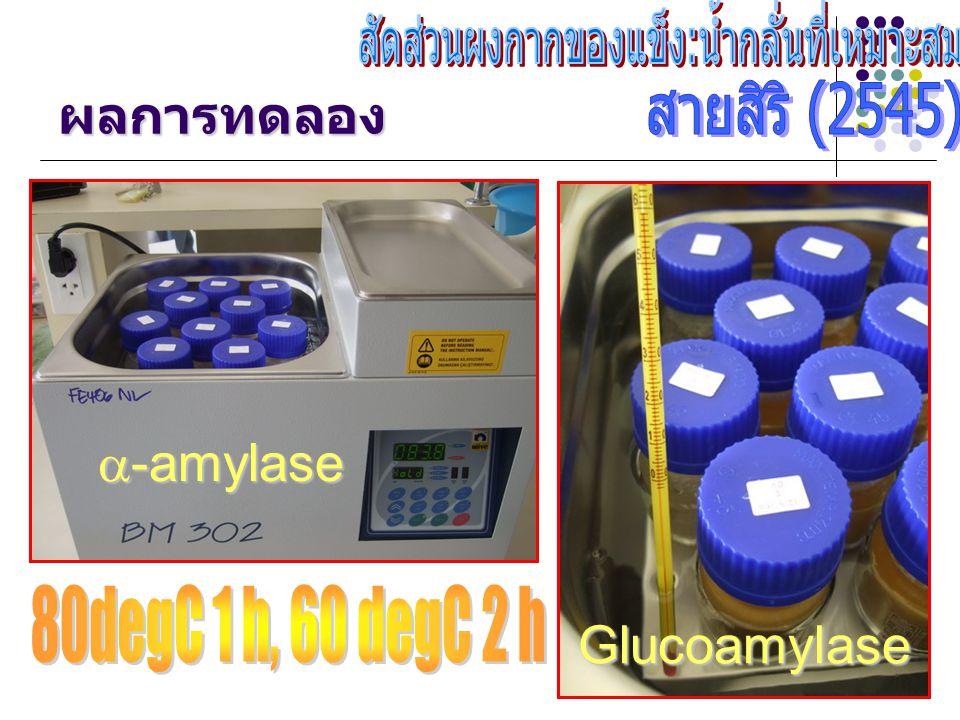 ผลการทดลอง  -amylase Glucoamylase
