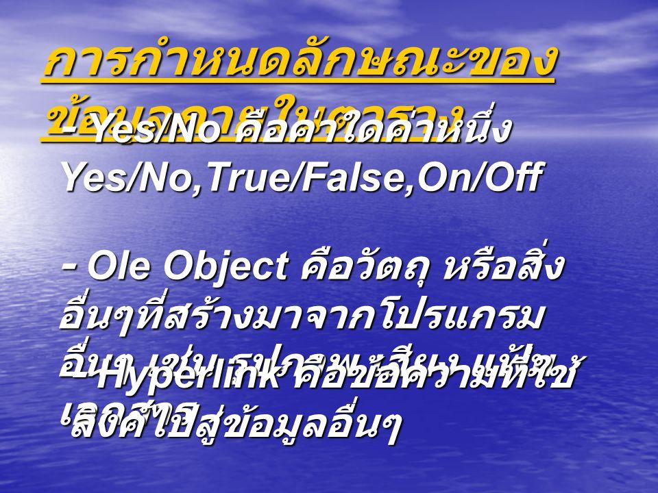 การกำหนดลักษณะของ ข้อมูลภายในตาราง - Yes/No คือค่าใดค่าหนึ่ง Yes/No,True/False,On/Off - Ole Object คือวัตถุ หรือสิ่ง อื่นๆที่สร้างมาจากโปรแกรม อื่นๆ เช่น รูปภาพ เสียง แฟ้ม เอกสาร - Hyperlink คือข้อความที่ใช้ ลิงค์ไปสู่ข้อมูลอื่นๆ