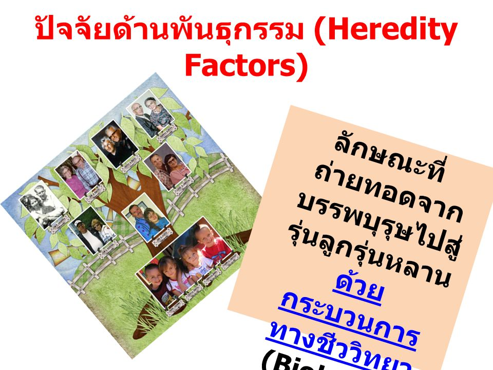 ปัจจัยด้านพันธุกรรม (Heredity Factors) ลักษณะที่ ถ่ายทอดจาก บรรพบุรุษไปสู่ รุ่นลูกรุ่นหลาน ด้วย กระบวนการ ทางชีววิทยา (Biological Transmission ) โดยอาศัย ยีน (Gene) เป็น ตัวนำ