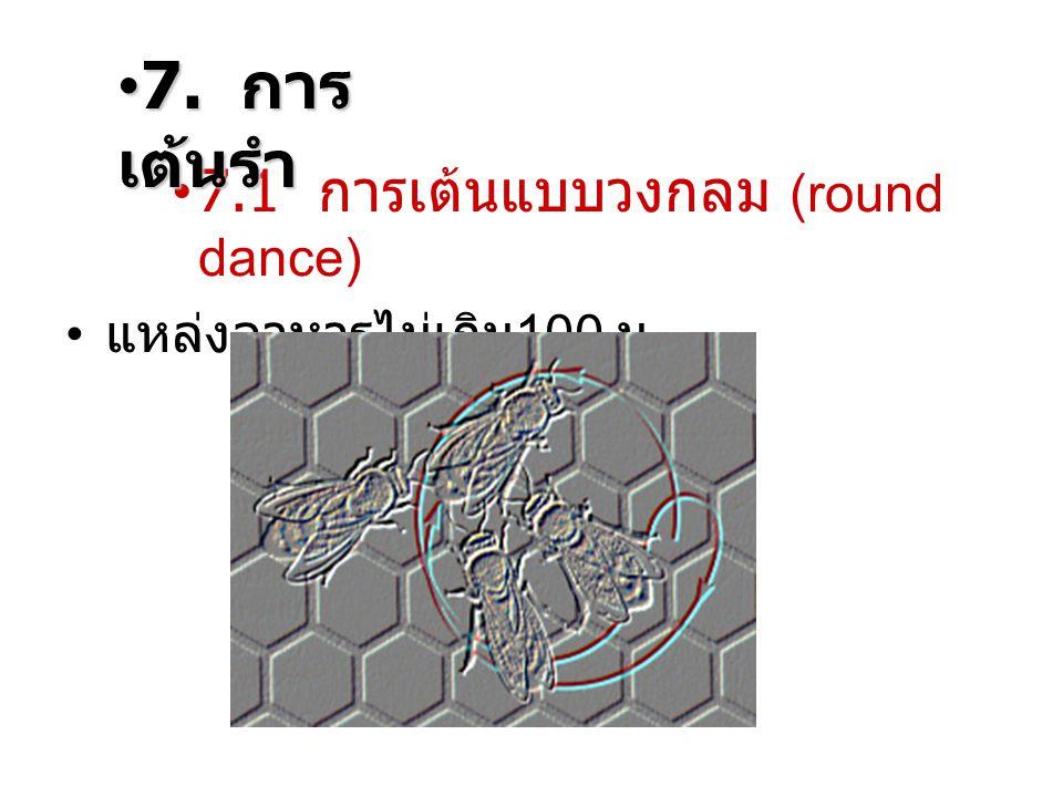 7.1 การเต้นแบบวงกลม (round dance) แหล่งอาหารไม่เกิน 100 ม. 7. การ เต้นรำ7. การ เต้นรำ