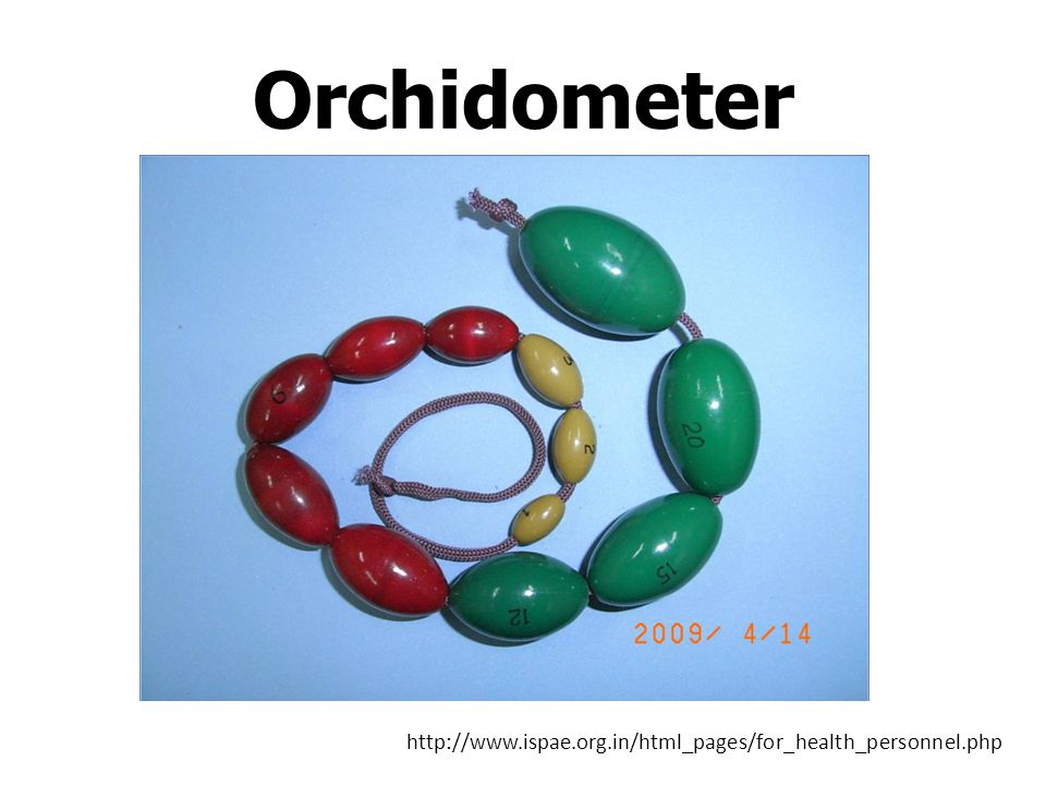 Orchidometer http://www.ispae.org.in/html_pages/for_health_personnel.php