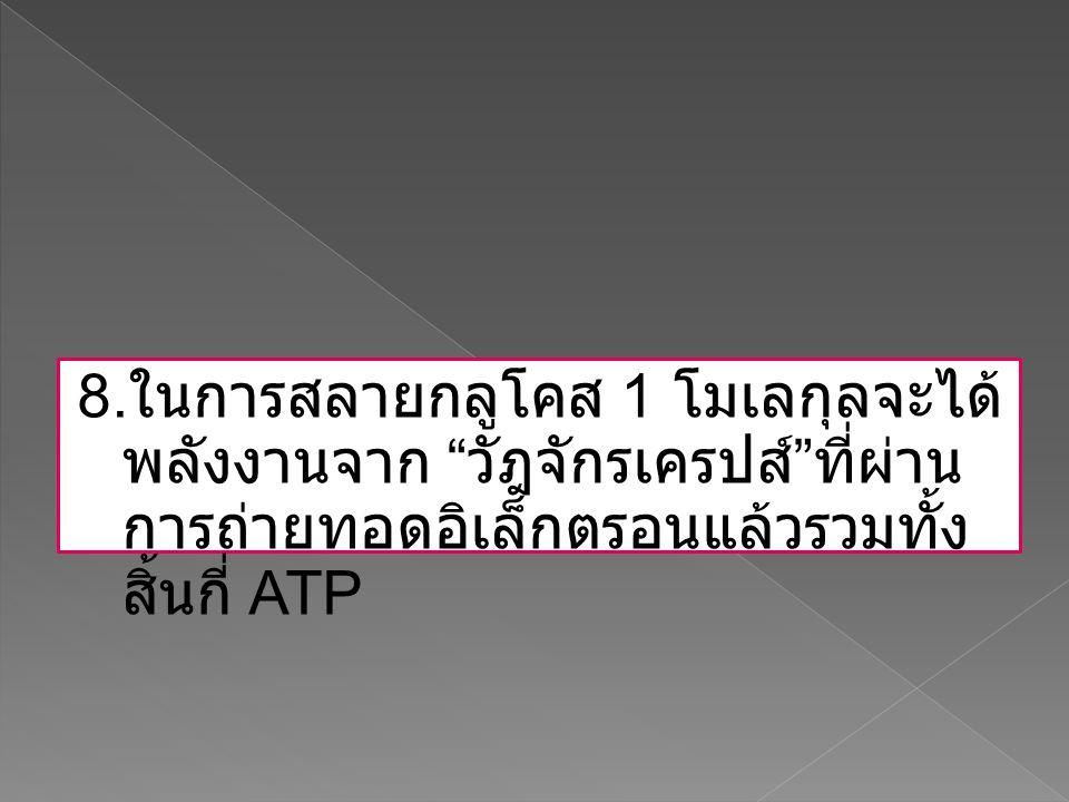 """8. ในการสลายกลูโคส 1 โมเลกุลจะได้ พลังงานจาก """" วัฎจักรเครปส์ """" ที่ผ่าน การถ่ายทอดอิเล็กตรอนแล้วรวมทั้ง สิ้นกี่ ATP"""