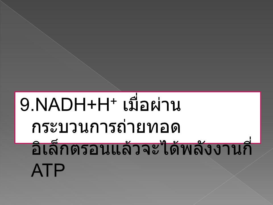 9.NADH+H + เมื่อผ่าน กระบวนการถ่ายทอด อิเล็กตรอนแล้วจะได้พลังงานกี่ ATP