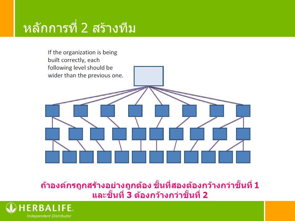 หลักการที่ 2 สร้างทีม ถ้าองค์กรถูกสร้างอย่างถูกต้อง ชั้นที่สองต้องกว้างกว่าชั้นที่ 1 และชั้นที่ 3 ต้องกว้างกว่าชั้นที่ 2