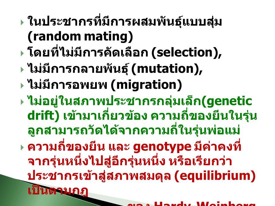  ในประชากรที่มีการผสมพันธุ์แบบสุ่ม (random mating)  โดยที่ไม่มีการคัดเลือก (selection),  ไม่มีการกลายพันธุ์ (mutation),  ไม่มีการอพยพ (migration)  ไม่อยู่ในสภาพประชากรกลุ่มเล็ก (genetic drift) เข้ามาเกี่ยวข้อง ความถี่ของยีนในรุ่น ลูกสามารถวัดได้จากความถี่ในรุ่นพ่อแม่  ความถี่ของยีน และ genotype มีค่าคงที่ จากรุ่นหนึ่งไปสู่อีกรุ่นหนึ่ง หรือเรียกว่า ประชากรเข้าสู่สภาพสมดุล (equilibrium) เป็นตามกฎ ของ Hardy-Weinberg