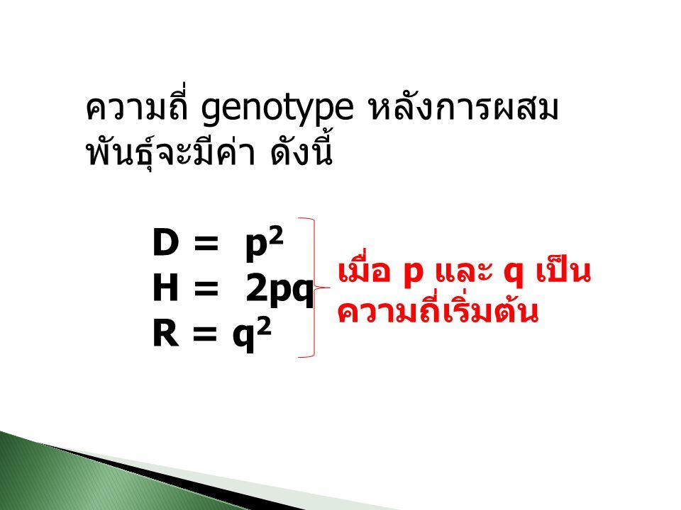 ความถี่ genotype หลังการผสม พันธุ์จะมีค่า ดังนี้ D = p 2 H = 2pq R = q 2 เมื่อ p และ q เป็น ความถี่เริ่มต้น