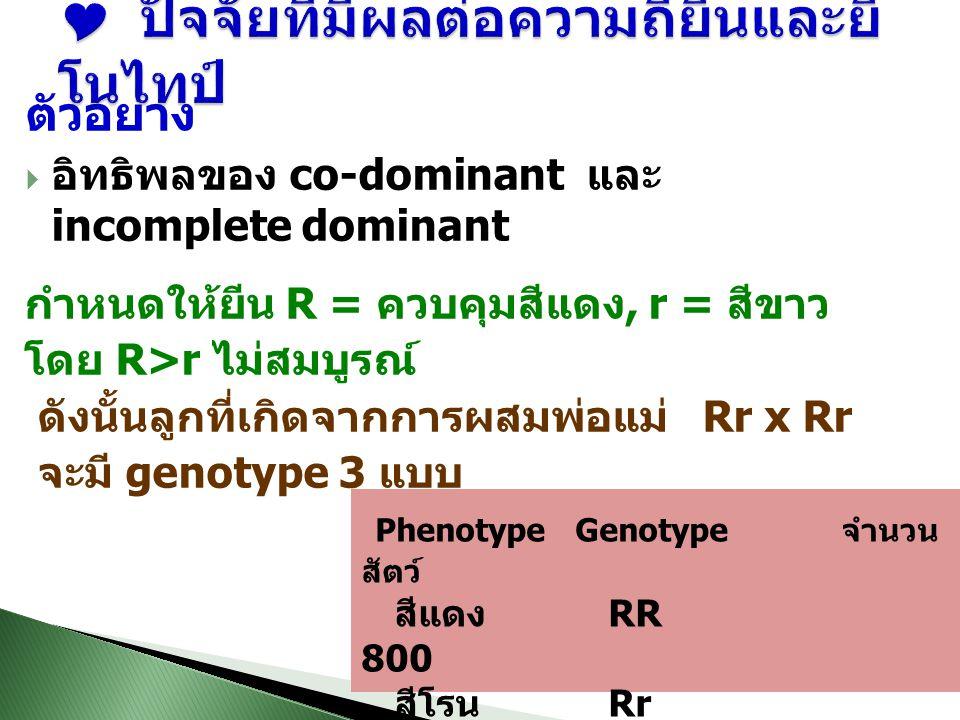 ตัวอย่าง  อิทธิพลของ co-dominant และ incomplete dominant กำหนดให้ยีน R = ควบคุมสีแดง, r = สีขาว โดย R>r ไม่สมบูรณ์ ดังนั้นลูกที่เกิดจากการผสมพ่อแม่ Rr x Rr จะมี genotype 3 แบบ Phenotype Genotype จำนวน สัตว์ สีแดง RR 800 สีโรน Rr 150 สีขาว rr 50