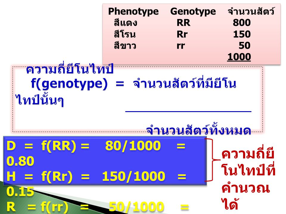 Phenotype Genotype จำนวนสัตว์ สีแดง RR 800 สีโรน Rr 150 สีขาว rr 50 1000 Phenotype Genotype จำนวนสัตว์ สีแดง RR 800 สีโรน Rr 150 สีขาว rr 50 1000 D = f(RR) = 80/1000 = 0.80 H = f(Rr) = 150/1000 = 0.15 R = f(rr) = 50/1000 = 0.05 D = f(RR) = 80/1000 = 0.80 H = f(Rr) = 150/1000 = 0.15 R = f(rr) = 50/1000 = 0.05 ความถี่ยี โนไทป์ที่ คำนวณ ได้