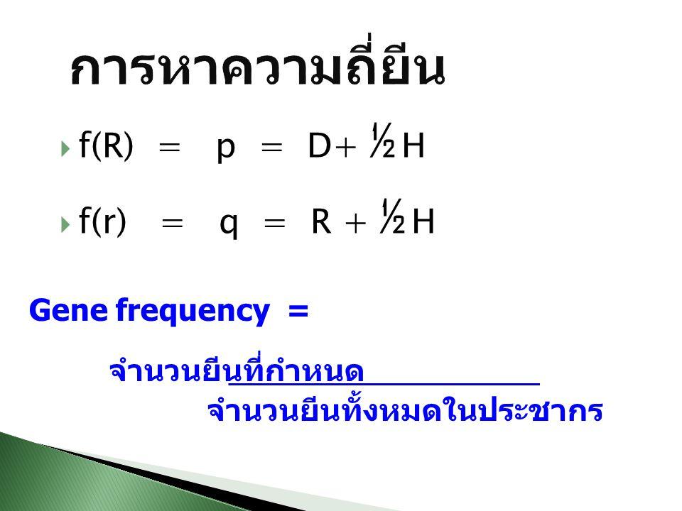 f(R) = p = D+ ½ H  f(r) = q = R + ½ H Gene frequency = จำนวนยีนที่กำหนด จำนวนยีนทั้งหมดในประชากร