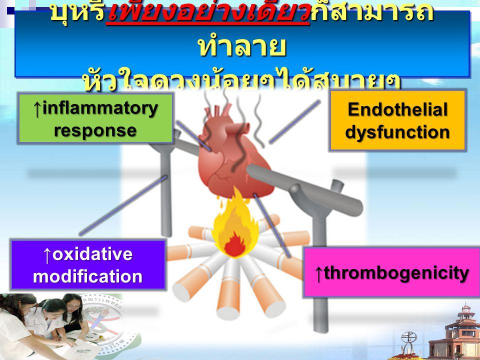 บุหรี่เพียงอย่างเดียวก็สามารถ ทำลาย หัวใจดวงน้อยๆได้สบายๆ Endothelial dysfunction ↑thrombogenicity ↑inflammatory response ↑oxidative modification