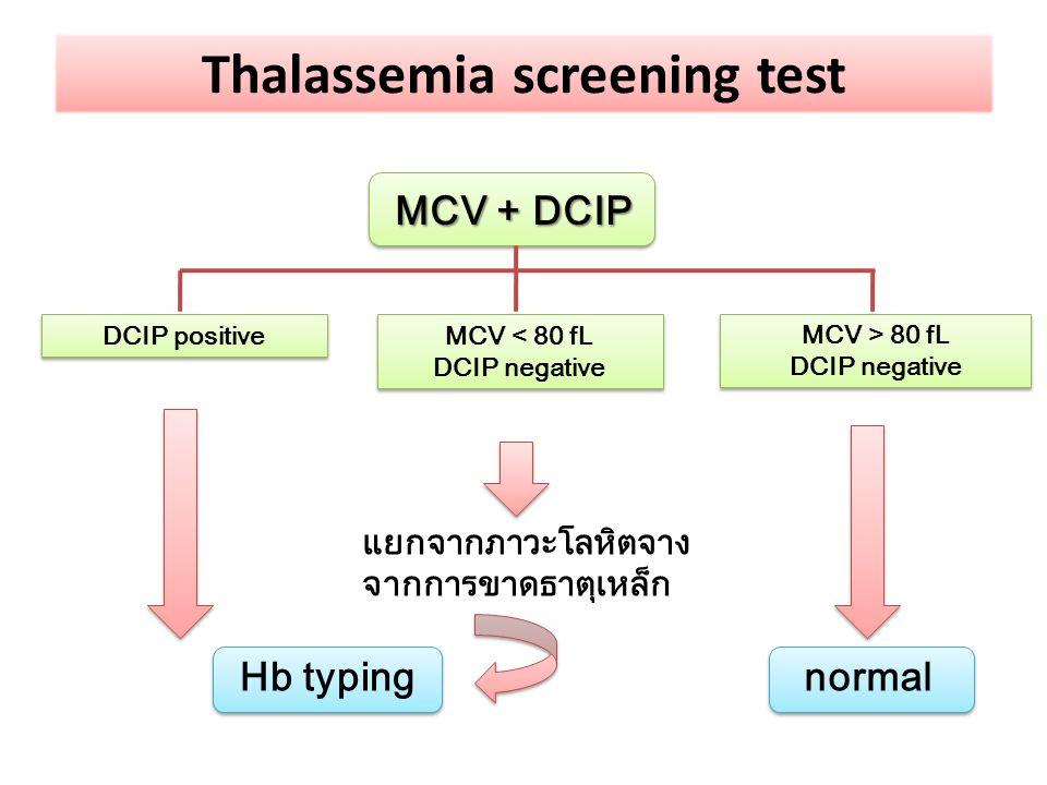 MCV + DCIP DCIP positive MCV < 80 fL DCIP negative MCV < 80 fL DCIP negative MCV > 80 fL DCIP negative MCV > 80 fL DCIP negative Hb typingnormal แยกจา