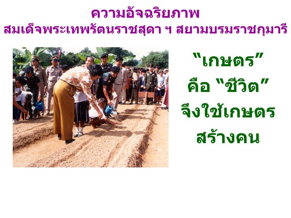 """ความอัจฉริยภาพ สมเด็จพระเทพรัตนราชสุดา ฯ สยามบรมราชกุมารี """"เกษตร"""" คือ """"ชีวิต"""" จึงใช้เกษตร สร้างคน"""