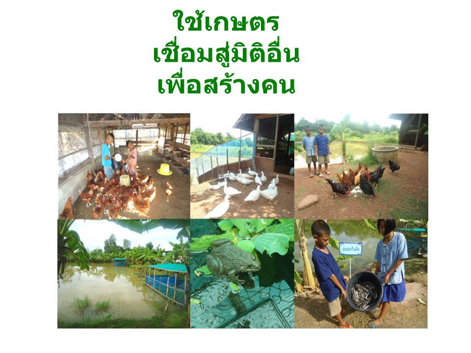 ชาติไทย ท่านคือผู้คืนความสุข ที่ยั่งยืน ให้กับคนไทยและชาติไทย อย่างแท้จริง