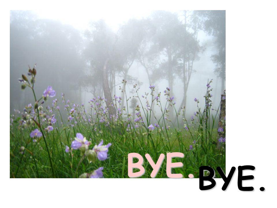 BYE. BYE.