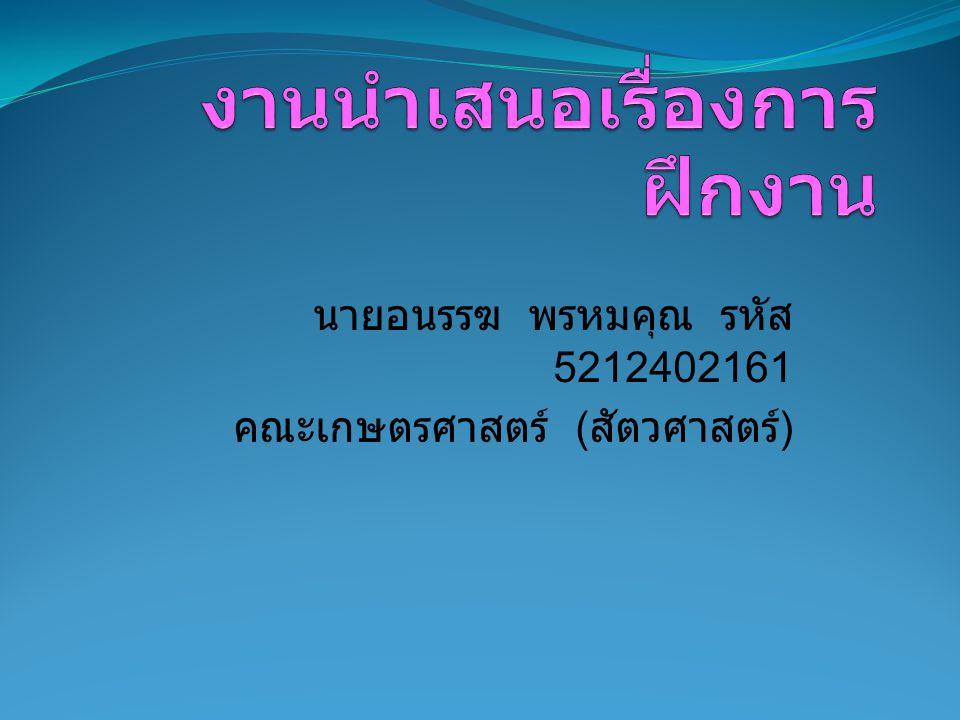 นายอนรรฆ พรหมคุณ รหัส 5212402161 คณะเกษตรศาสตร์ ( สัตวศาสตร์ )