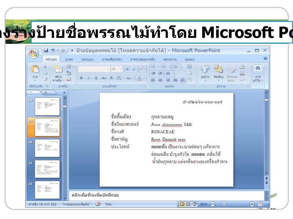 ตัวอย่างร่างป้ายชื่อพรรณไม้ทำโดย Microsoft PowerPoint