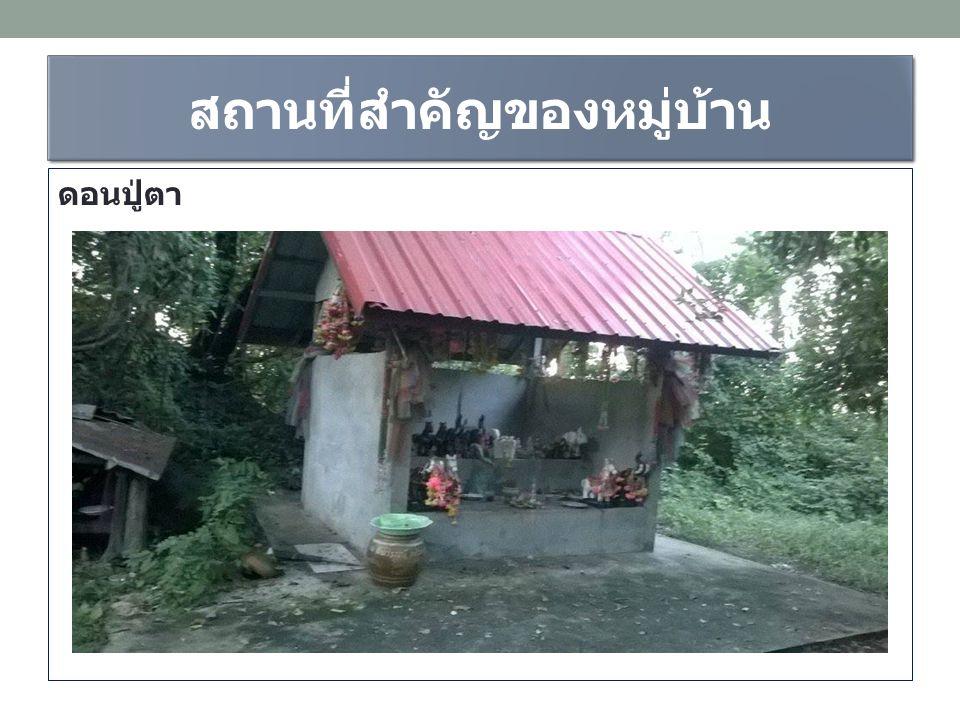 สถานที่สำคัญของหมู่บ้าน ดอนปู่ตา