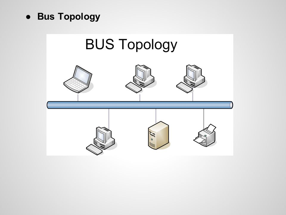 ●Bus Topology