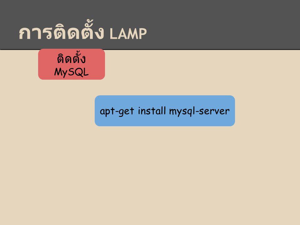 การติดตั้ง LAMP ติดตั้ง MySQL apt-get install mysql-server