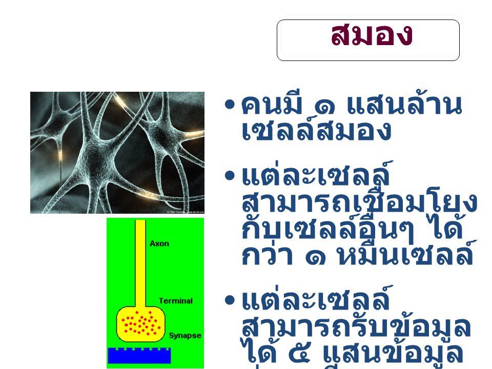 สมอง คนมี ๑ แสนล้าน เซลล์สมอง แต่ละเซลล์ สามารถเชื่อมโยง กับเซลล์อื่นๆ ได้ กว่า ๑ หมื่นเซลล์ แต่ละเซลล์ สามารถรับข้อมูล ได้ ๕ แสนข้อมูล ต่อนาที