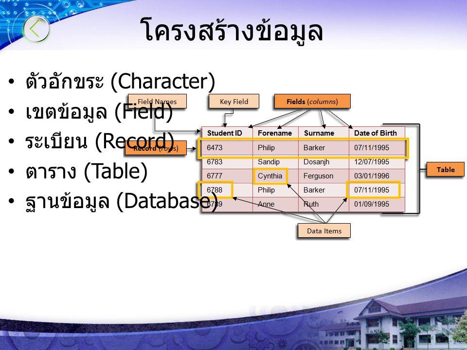 โครงสร้างข้อมูล ตัวอักขระ (Character) เขตข้อมูล (Field) ระเบียน (Record) ตาราง (Table) ฐานข้อมูล (Database)