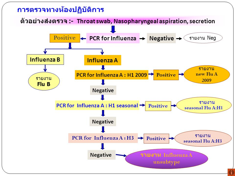 การตรวจทางห้องปฏิบัติการ PCR for Influenza ตัวอย่างส่งตรวจ :- Throat swab, Nasopharyngeal aspiration, secretion Negative รายงาน Neg Positive PCR for I