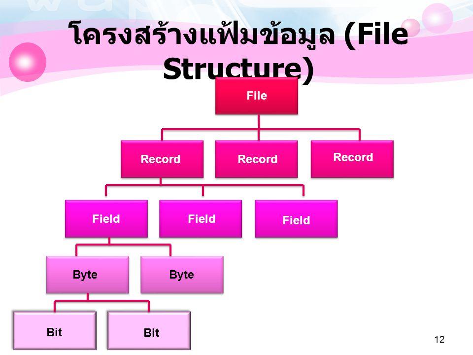 12 โครงสร้างแฟ้มข้อมูล (File Structure) File Record Field Byte Bit
