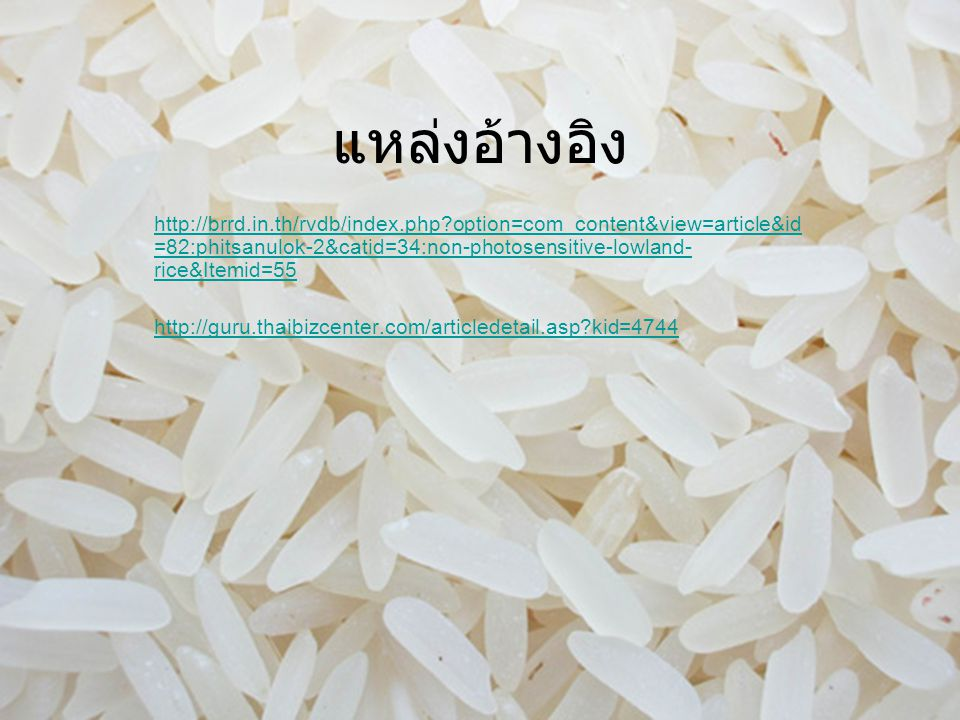 แหล่งอ้างอิง http://brrd.in.th/rvdb/index.php option=com_content&view=article&id =82:phitsanulok-2&catid=34:non-photosensitive-lowland- rice&Itemid=55 http://guru.thaibizcenter.com/articledetail.asp kid=4744
