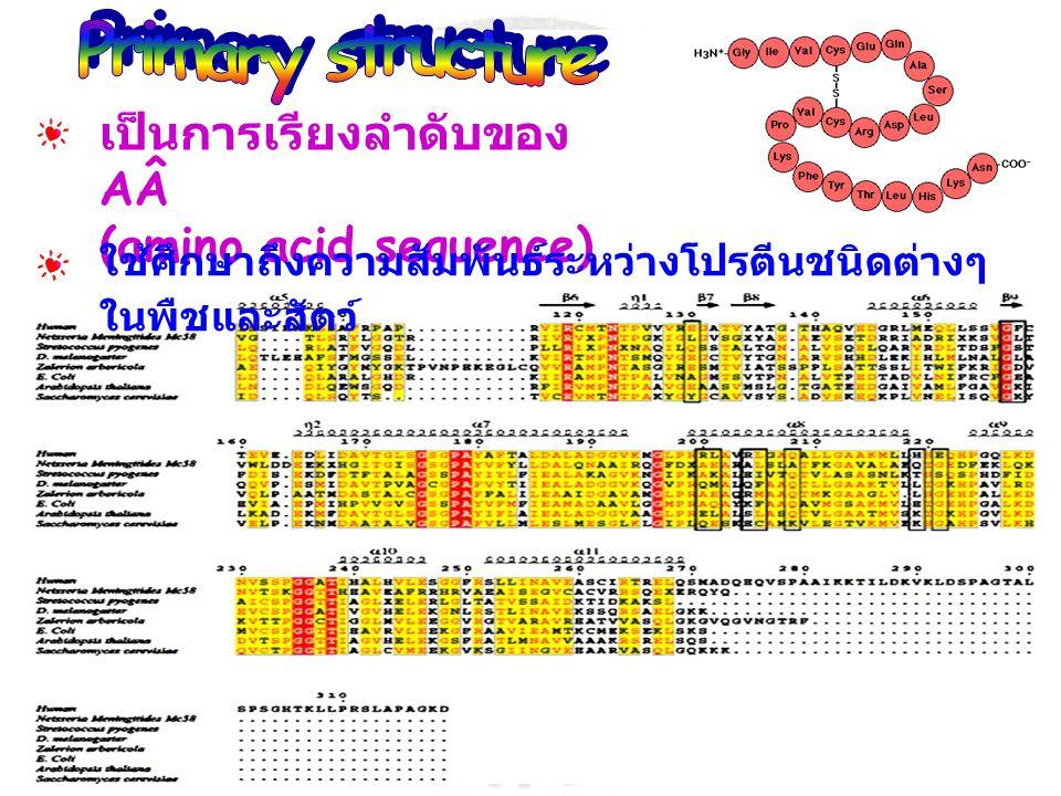 เป็นการเรียงลำดับของ AÂ (amino acid sequence) ใช้ศึกษาถึงความสัมพันธ์ระหว่างโปรตีนชนิดต่างๆ ในพืชและสัตว์