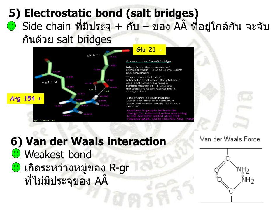 5) Electrostatic bond (salt bridges) Side chain ที่มีประจุ + กับ – ของ AÂ ที่อยู่ใกล้กัน จะจับ กันด้วย salt bridges 6) Van der Waals interaction Weake