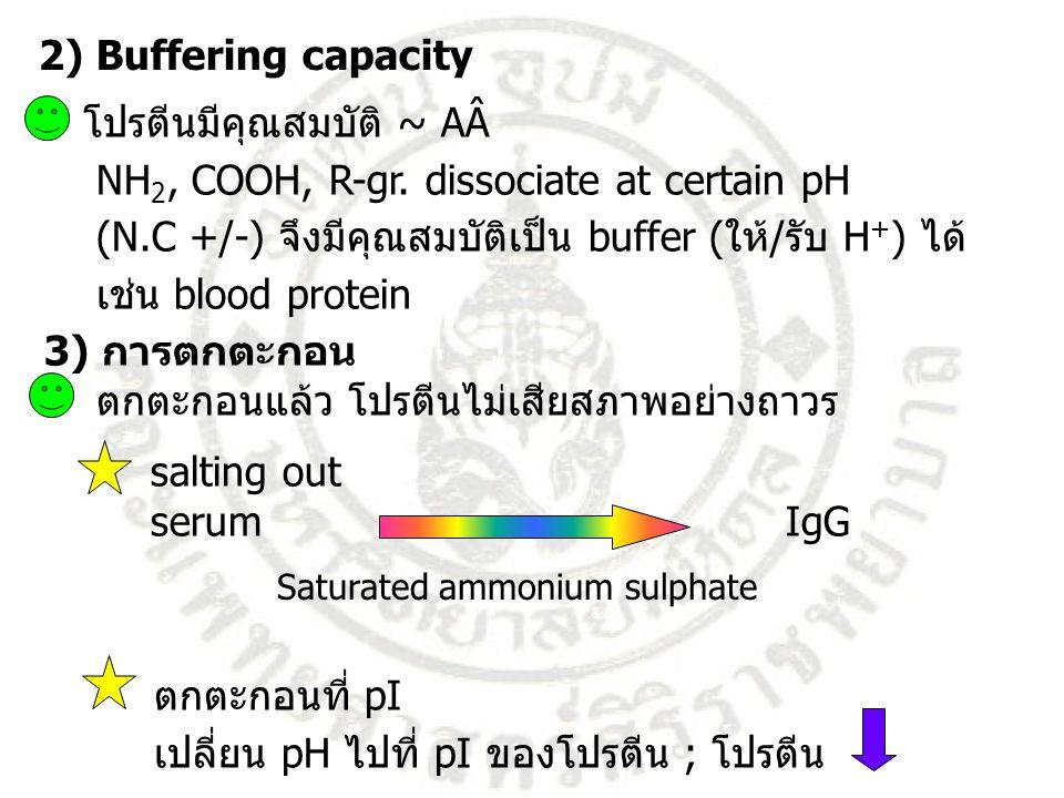 โปรตีนมีคุณสมบัติ ~ AÂ NH 2, COOH, R-gr. dissociate at certain pH (N.C +/-) จึงมีคุณสมบัติเป็น buffer (ให้/รับ H + ) ได้ เช่น blood protein 3) การตกตะ
