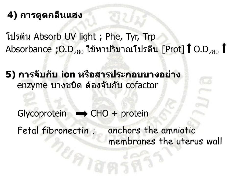4) การดูดกลืนแสง โปรตีน Absorb UV light ; Phe, Tyr, Trp Absorbance ;O.D 280 ใช้หาปริมาณโปรตีน [Prot] O.D 280 5) การจับกับ ion หรือสารประกอบบางอย่าง en