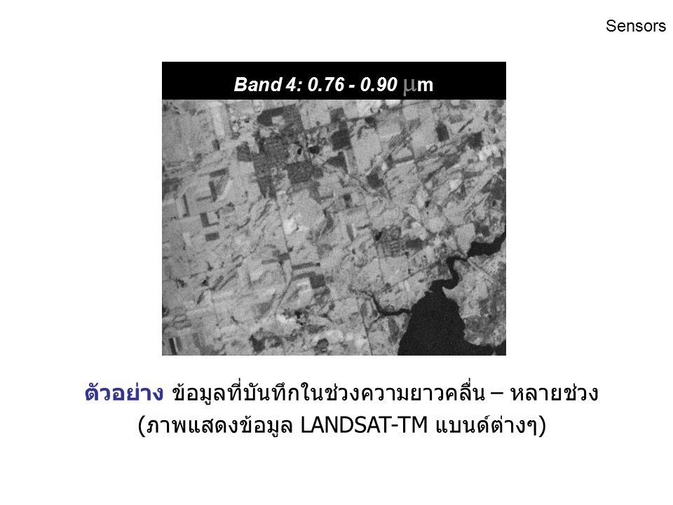 Band 3: 0.63 - 0.69  m ตัวอย่าง ข้อมูลที่บันทึกในช่วงความยาวคลื่น – หลายช่วง (ภาพแสดงข้อมูล LANDSAT-TM แบนด์ต่างๆ) Sensors