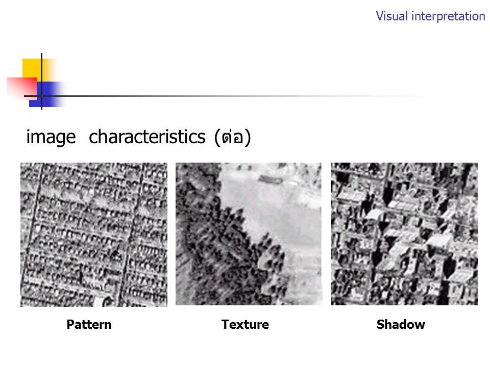 Visual Interpretation แปลความหมายจากลักษณะที่ปรากฏบนภาพ (image characteristics) ToneShapeSize