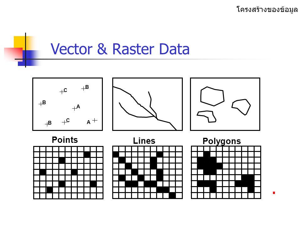 Spatial data & attribute data แผนที่ & ตาราง. ชนิดของข้อมูล