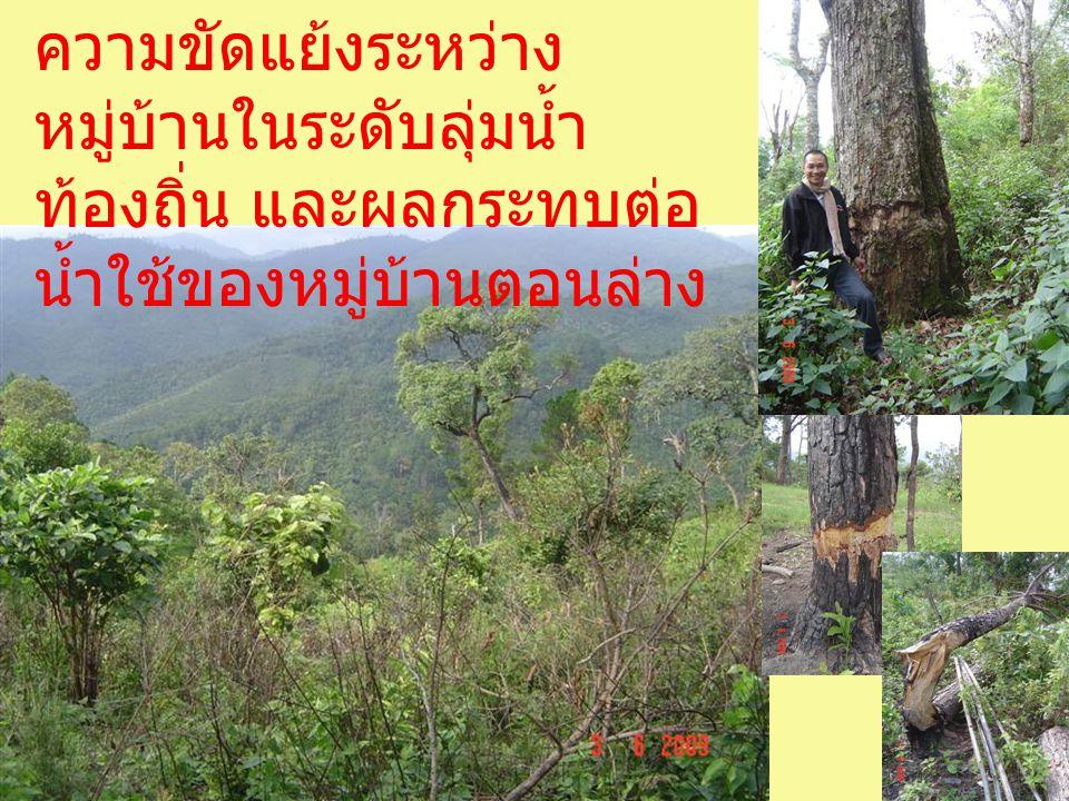 ภูมิทัศน์ของไร่ หมุนเวียน ที่ไม่มี ผลกระทบรุนแรง ต่อสภาพนิเวศ สิ่งแวดล้อมทาง ธรรมชาติ