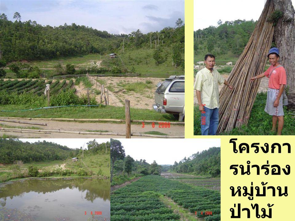 โครงการพัฒนาอ่างเก็บน้ำ เพื่อแก้ไขปัญหาน้ำขาดแคลนของ หมู่บ้าน และบรรเทาความขัดแย้งกับ หมู่บ้านข้างเคียง ได้ดำเนินการของบช่วยเหลือไปยัง จังหวัด เป็นเงินจำนวนทั้งสิ้น 7.0 ล้าน บาท ประเมินตามตัวอย่างโครงการของ รัฐที่ผ่านมา ข้อเสนอเพื่อสนับสนุนโครงการนี้ 1.Pre-feasibility study เพื่อประเมินความ เป็นไปได้ 2.