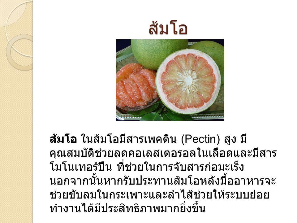 ส้มโอ ส้มโอ ในส้มโอมีสารเพคติน (Pectin) สูง มี คุณสมบัติช่วยลดคอเลสเตอรอลในเลือดและมีสาร โมโนเทอร์ปืน ที่ช่วยในการจับสารก่อมะเร็ง นอกจากนั้นหากรับประทานส้มโอหลังมื้ออาหารจะ ช่วยขับลมในกระเพาะและลำไส้ช่วยให้ระบบย่อย ทำงานได้มีประสิทธิภาพมากยิ่งขึ้น