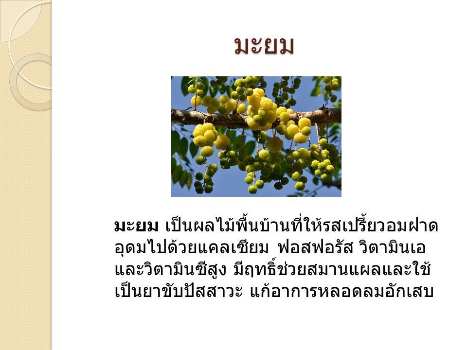 มะยม มะยม เป็นผลไม้พื้นบ้านที่ให้รสเปรี้ยวอมฝาด อุดมไปด้วยแคลเซียม ฟอสฟอรัส วิตามินเอ และวิตามินซีสูง มีฤทธิ์ช่วยสมานแผลและใช้ เป็นยาขับปัสสาวะ แก้อาก