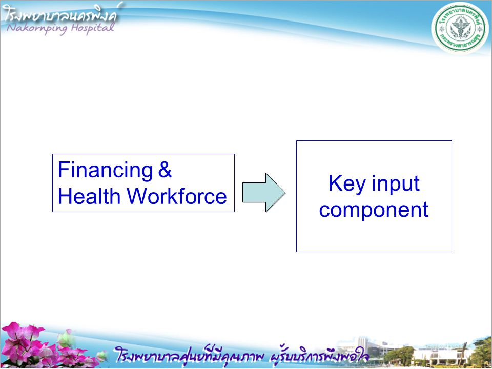 Financing & Health Workforce Key input component