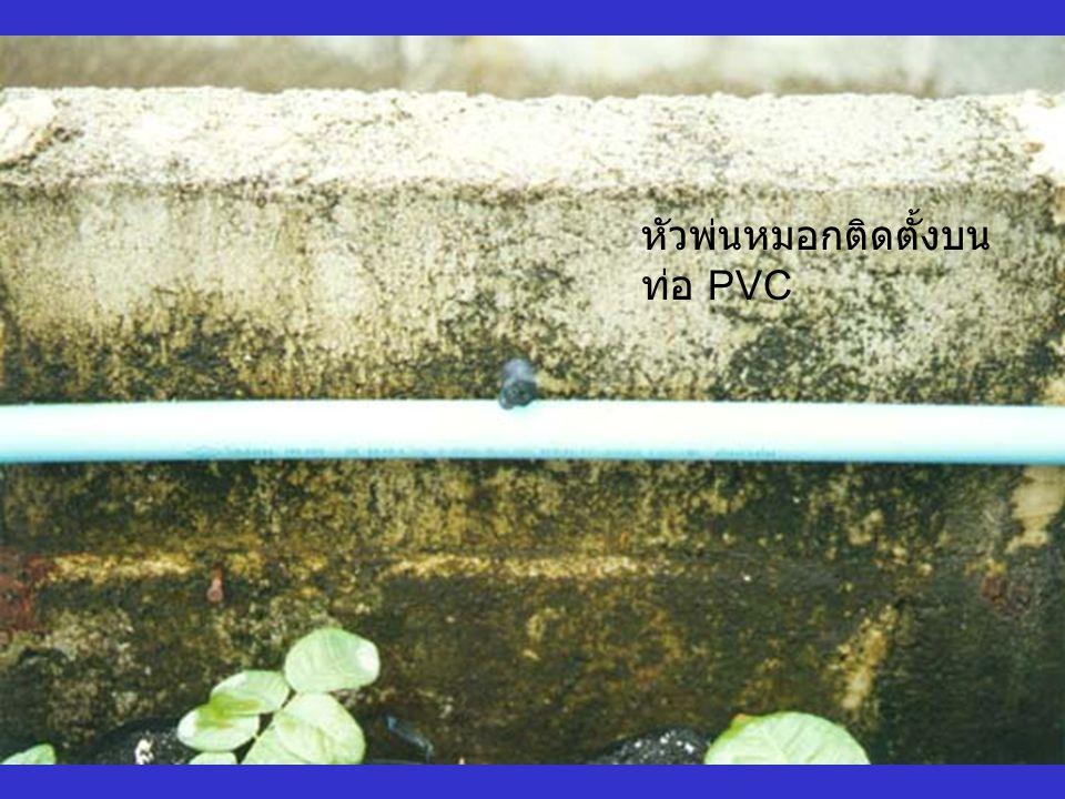 ระบบพ่นหมอก ทำงานโดยควบคุม การจ่ายน้ำเป็น จังหวะตามที่ กำหนด เริ่มจ่ายน้ำ 8.00 น.-18.00 น.