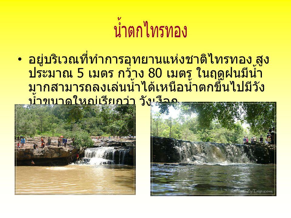 อยู่บริเวณที่ทำการอุทยานแห่งชาติไทรทอง สูง ประมาณ 5 เมตร กว้าง 80 เมตร ในฤดูฝนมีน้ำ มากสามารถลงเล่นน้ำได้เหนือน้ำตกขึ้นไปมีวัง น้ำขนาดใหญ่เรียกว่า วัง